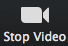 'Stop Video' button