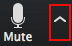 adjust audio settings from the 'Mute/UnMute' button