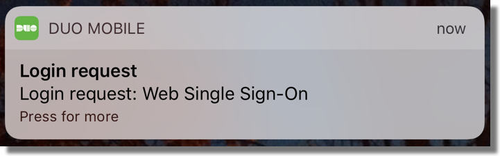 Duo single sign-on request