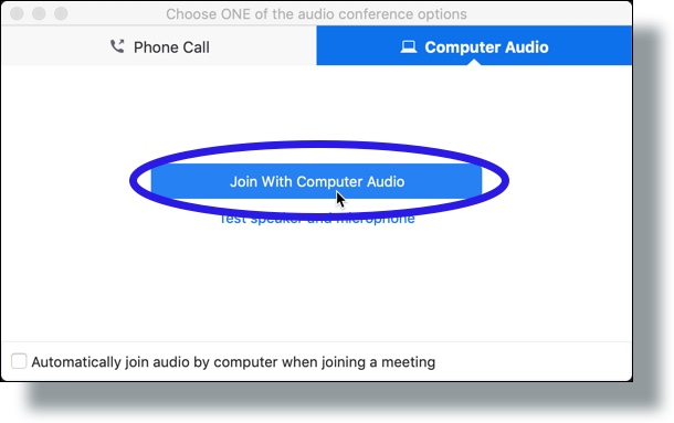 join using computer audio or join by phone