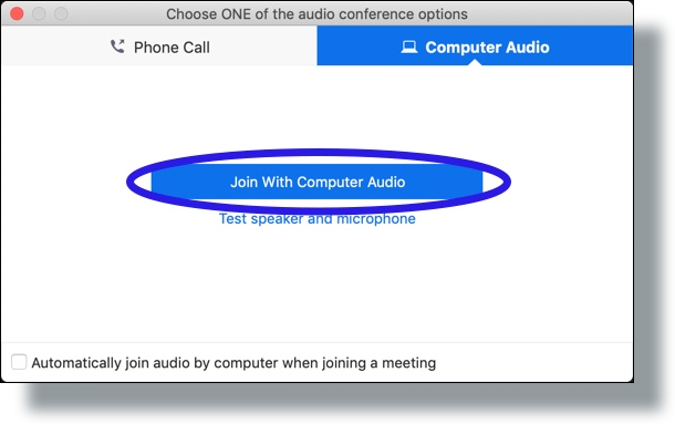 Select option to use your computer's audio for Zoom meeting