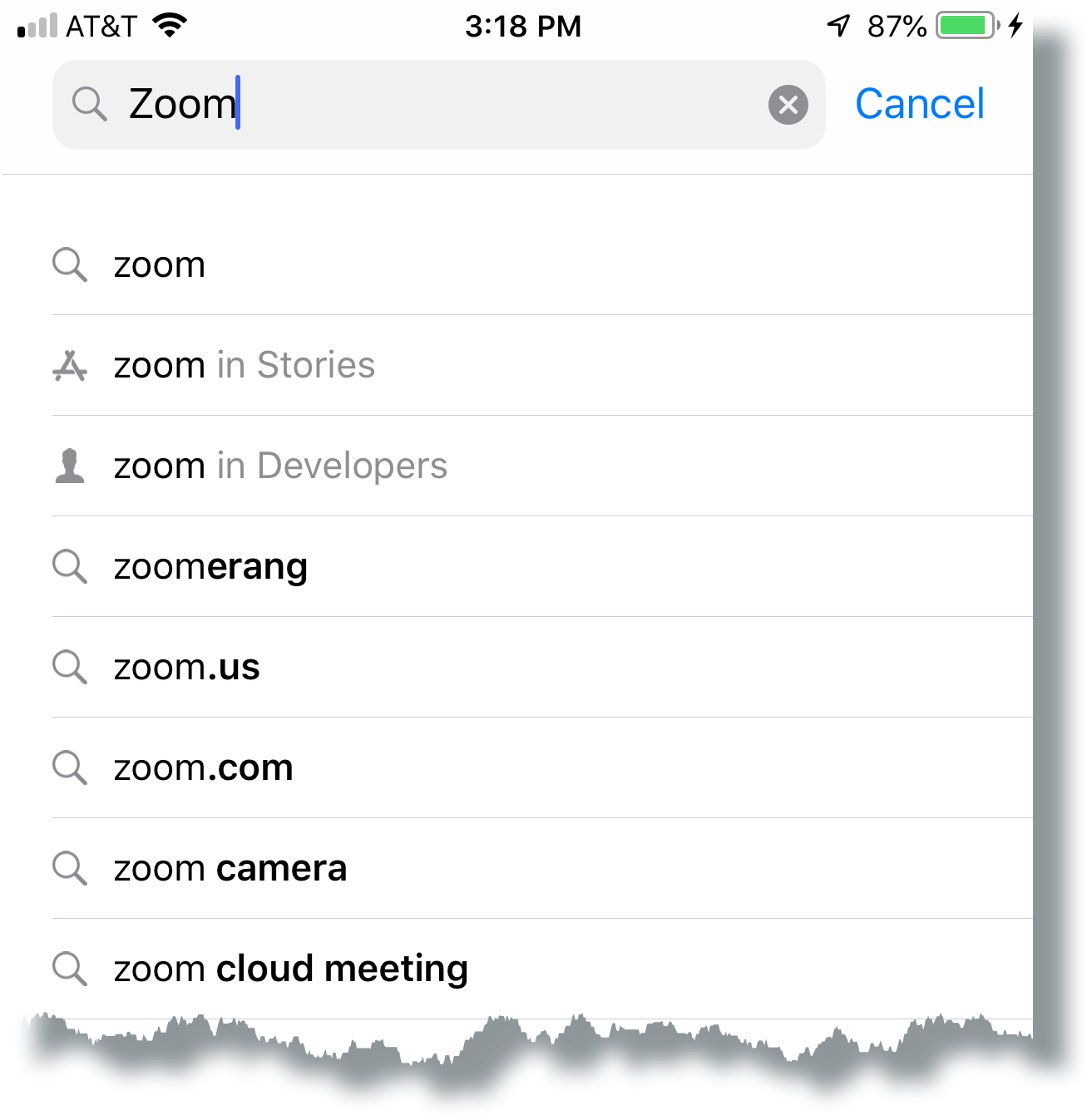 Enter Zoom in app store search box