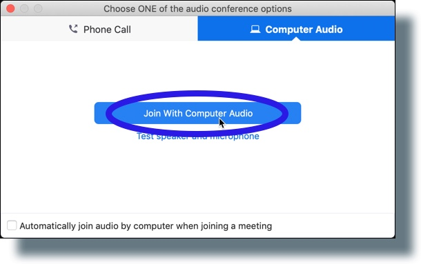 Click 'Join With Computer Audio' or select 'Phone Call' option