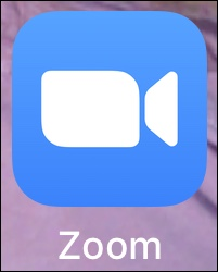 Zoom program icon