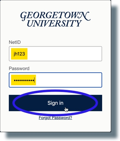 Enter your NetID and password and then click 'Continue'