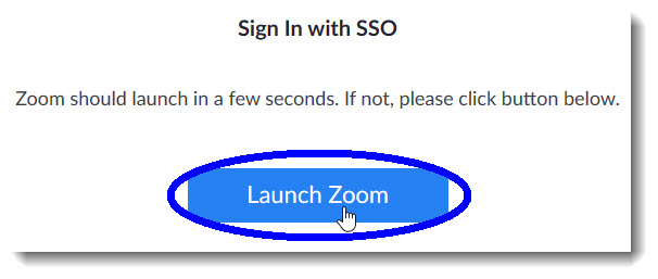 Click 'Launch Zoom' if Zoom does not open