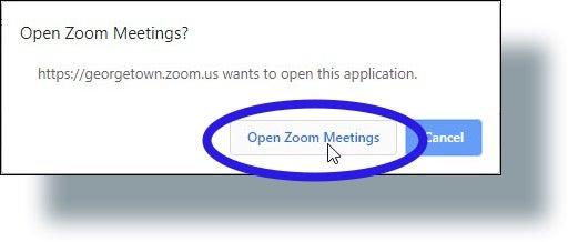 Click 'Open Zoom Meetings'