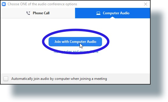 Click 'Join with Computer Audio'