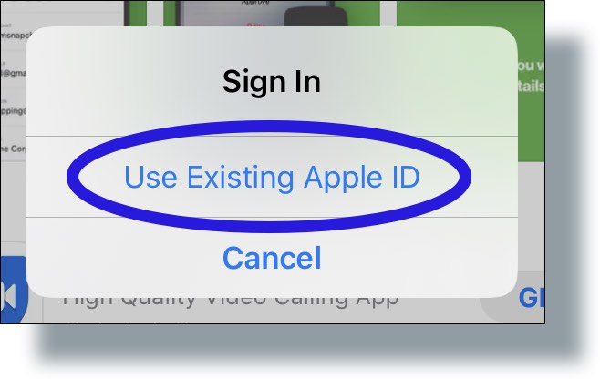 Tap 'Use Existing Apple ID'