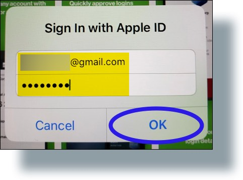 Enter your Apple ID and password, then tap 'OK'