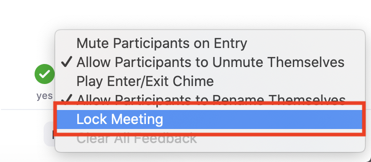 Lock Meeting option
