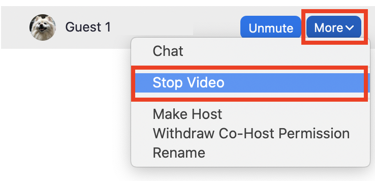 Stop video button