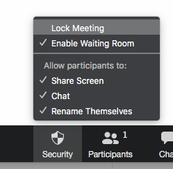 zoom security settings